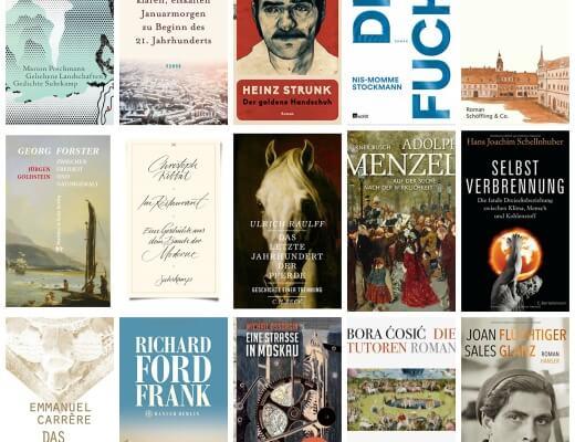 PicMonkey Collage Bücher